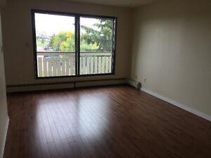 Millwoods 2 Bedroom Apartment-Free Dec Rent, TV & Internet