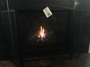FIREPLACE SCREEN - BRAND NEW/NEVER USED