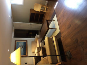 One Bedroom Furnished Basement Apt
