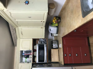 Kitchen cabinets with painted oak doors