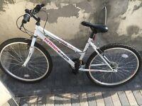 British eagle riviera bike