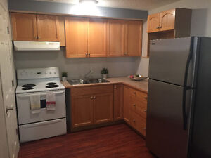 Open Concept Lower Level Suite $850.00 SW Airdrie