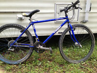 1989 Trek 950 Singletrack project bike