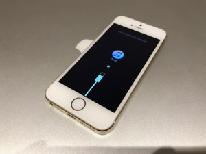 iPhone 5S Gold (cannot restore)