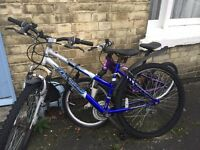 One adult mountain bike and one child's bike