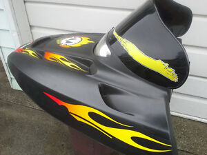 POLARIS EDGE HOOD Windsor Region Ontario image 4