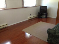 Bright, Clean and Spacious One-Bedroom Basement Apartment