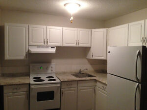 Newly Renovated One (1) Bedroom Suite by Whyte Ave