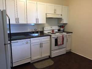 Beautiful 2 Bedroom Apartment for Rent (Aug 1st)