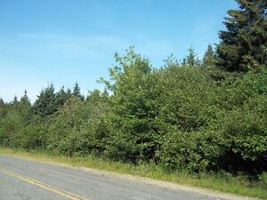 Land for Home or Cottage at Lake Ainslie