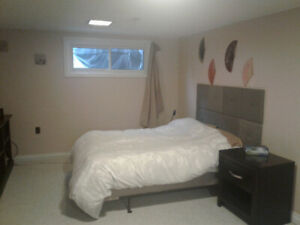 Bright, large basement room for student or trainee (furnished)