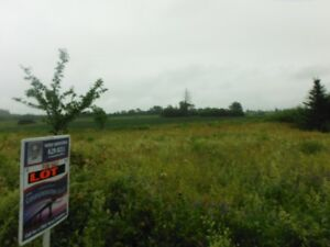 Almost 1 Acre Building Lot in Crapaud at a Great Price!!