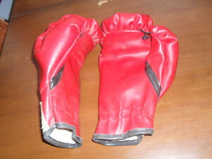 Everlast youth boxing gloves Cornwall Ontario image 2
