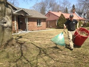 fall clean ups London Ontario image 3