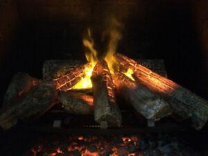 Electric Fireplace Opti-Myst