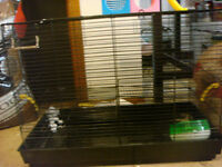 Black Hamster Cage With Toys
