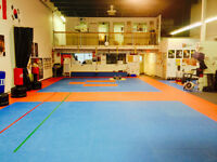 Looking for a Tenant to Cost Share Modern, Spacious Facility.