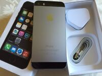 iPhone 5s 16gb space gray unlocked) any network