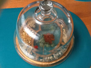 Glass domed cheese dish London Ontario image 1