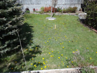 Grass/Sod Removal