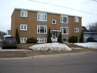 Newly Renovated quiet 2 bedroom heated apt, Hospital area