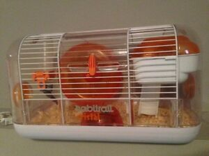 Hamster and cage 5 months old