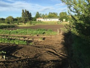 Acreage For Rent or Sale