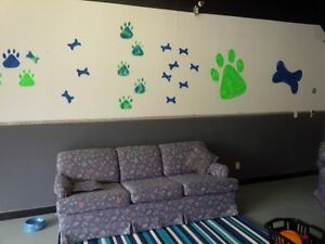 RuffHouse Dog Daycare NOW OPEN (NBSPCA License # 0719)