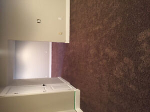 600+ sq ft carpet : $650 OBO