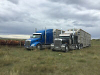 OWNER / LEASE OPERATOR