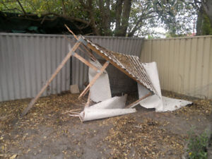 Storm Cleanup - Landscape - Outdoor - Removal - Disposal
