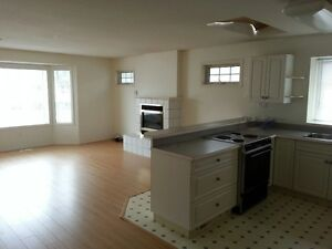 Bright spacious newly renovated 2 bedroom duplex