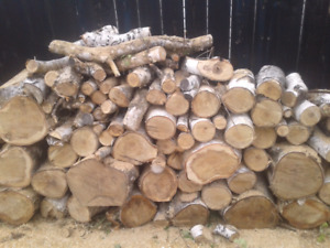 Birch fire wood for sale