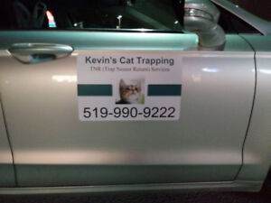Kevin's Cat Trapping Service