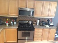 Maple kitchen cabinets with countertop