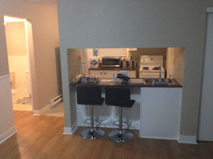 1 bedroom apartment near SMU sublease