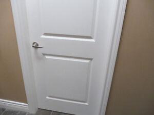 """30"""" Interior door w/door jamb, hinges/brushed nickel door handle"""