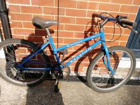 Kids Vintage Raleigh Bike