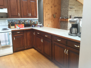 Kitchen Cabinets, Counter and Appliances for Sale