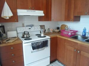 Bon appart à partager - Flatmate wanted starting May 1st