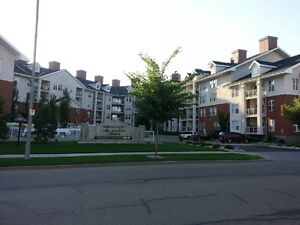 High end one bedroom apartment style condo.