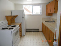 CLEAN 1 BEDROOM BASEMENT APARTMENT, AVAILABLE NOW.