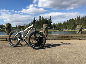 2016 Radrover Fat Tire 750W 40KMH Hand Throttle And Pedal Assist