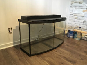 Aquarium Courbée 55 Gallons