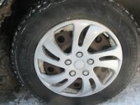 Lost hubcap ( Size 16 )