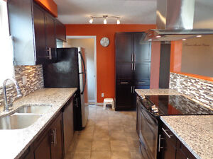 Beautiful North London Bungalow! Hurry and Call Today! London Ontario image 5
