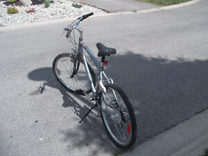 Adult Commuter Bike For Sale London Ontario image 6