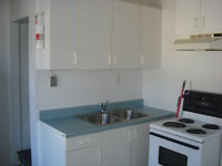 BEAUTIFUL 1-BEDROOM APARTMENT AVAILABLE SEPT. 1st
