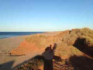 Thunder Cove Darnley ,PEI cottage to be built in spring 2017