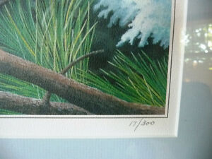 """Hand Signed, Numbered Lithograph by Peter Miehm """"Finches"""" 1981 Stratford Kitchener Area image 6"""